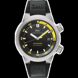 Часы IWC Aquatimer Automatic 2000 titanium IWC3538-04